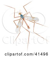 Clipart Illustration Of A Mosquito Hawk