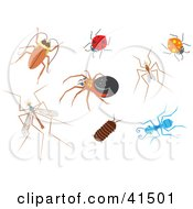 Clipart Illustration Of A Cockroach Ladybug Spider Mosquito Mosquito Hawk Pillbug And Ant by Prawny
