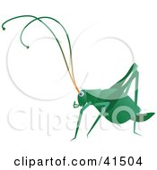 Clipart Illustration Of A Dark Green Cricket by Prawny