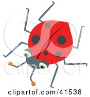 Clipart Illustration Of A Lonely Red Ladybug With Black Spots