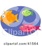 Clipart Illustration Of Three Orange Green And Pink Swimming Fish With Bubbles In Blue