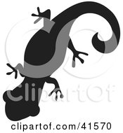 Clipart Illustration Of A Black Silhouetted Gecko