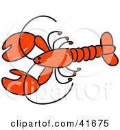 Sketched Red Lobster
