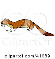 Clipart Illustration Of A Sketched Brown Weasel