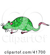 Sketched Green Rat