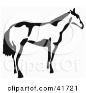 Black And White Paintbrush Stroke Styled Horse