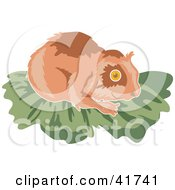 Clipart Illustration Of A Brown Hamster On Green