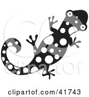 Clipart Illustration Of A Black And White Spotted Gecko