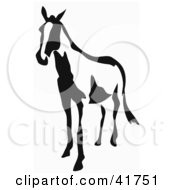 Black And White Horse In Paintbrush Stroke Style
