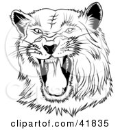 Clipart Illustration Of A Black And White Hissing Panther