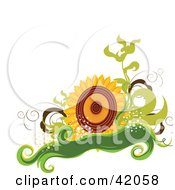 Nature Background Of A Big Sunflower With Green Vines And A Banner