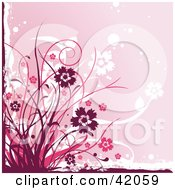 Clipart Illustration Of A Grunge Maroon And Pink Floral Background by L2studio
