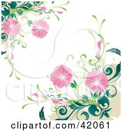 Grunge Floral Background Of Blooming Pink Flowers On Green Plants Over White