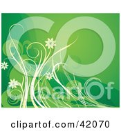 Clipart Illustration Of A Green Floral Background Of White And Green Flowers And Vines