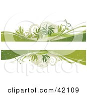 Grunge Text Box Bordered With Green And Beige Waves Plants And Tendrils On White