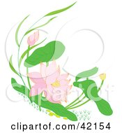 Clipart Illustration Of Pink Blooming Water Lilies by Cherie Reve