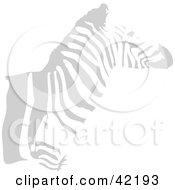 Clipart Illustration Of A Faint Gray Zebra Profile
