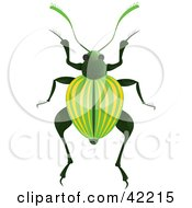 Clipart Illustration Of A Green Beetle With Yellow Lines On Its Wings