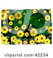 Clipart Illustration Of A Background Of Grungy Yellow Daisies On Green by Prawny