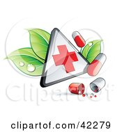 Triangular Hospital Sign With Leaves And Pills