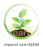 Clipart Illustration Of A Green Circle Around A Seedling Plant
