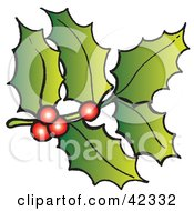Clipart Illustration Of A Stem Of Holly And Red Berries by Snowy #COLLC42332-0092