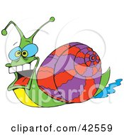 Goofy Snail With Big Eyes And A Purple And Red Shell