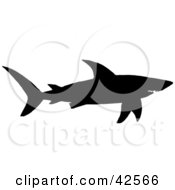 Black Silhouette Of A Swimming Shark