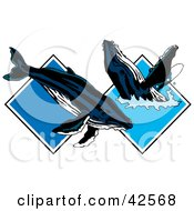 Clipart Illustration Of Two Whales Frolicking In Blue Water Diamonds