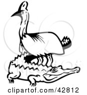 Clipart Illustration Of A Black And White Emu Standing Over A Gator
