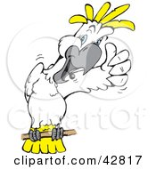 Clipart Illustration Of A White And Yellow Cockatoo Bird Giving The Thumbs Up