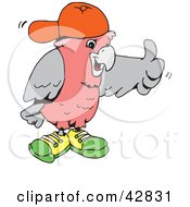 Clipart Illustration Of A Galah Cockatoo Wearing Shoes And A Hat And Giving The Thumbs Up