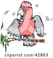 Clipart Illustration Of A Pink And Grey Galah Cockatoo Bird On A Branch by Dennis Holmes Designs