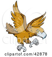 Clipart Illustration Of A Flying Wedge Tailed Eagle Aquila Audax by Dennis Holmes Designs #COLLC42878-0087