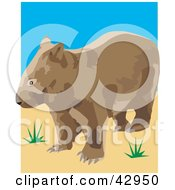 Clipart Illustration Of A Wild Brown Wombat