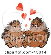 Clipart Illustration Of A Pair Of Accident Prone Enchidnas In Love Covered In Bandages