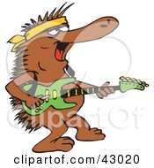 Clipart Illustration Of A Guitarist Echidna Playing During A Concert