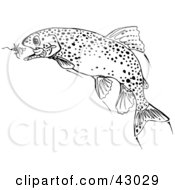 Clipart Illustration Of A Black And White Trout Fish Chasing A Lure