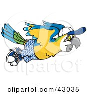 Clipart Illustration Of A Flying Blue And Yellow Macaw In Shorts And A Hat by Dennis Holmes Designs