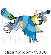 Clipart Illustration Of A Blue And Yellow Macaw Wearing Shorts And A Hat In Flight by Dennis Holmes Designs