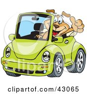 Clipart Illustration Of A Dog Driving A Green Slug Bug Convertible And Giving The Thumbs Up by Dennis Holmes Designs #COLLC43065-0087