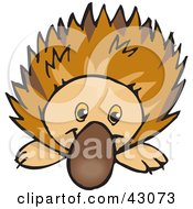 Clipart Illustration Of A Cute And Curious Echidna Spiny Anteater
