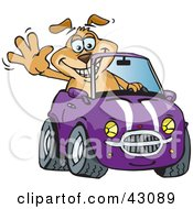 Clipart Illustration Of A Happy Waving Dog Driving A Purple Convertible Car