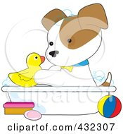 Cute Puppy Playing With A Rubber Duck In A Bath Tub