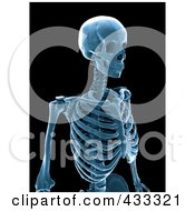 Royalty Free RF Clipart Illustration Of A 3d Blue Human Skeleton Xray by Mopic