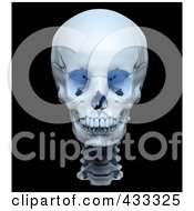 Royalty Free RF Clipart Illustration Of A 3d Highly Accurate Render Of A Human Skull by Mopic