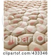 Royalty Free RF Clipart Illustration Of A 3d Background Of Skin Tissue