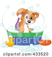 Royalty Free RF Clipart Illustration Of A Cute Puppy Scrubbing His Back While Taking A Bath by Pushkin