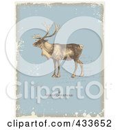 Reindeer Over Writing With A Holiday Greeting On Blue Beige And White Grunge