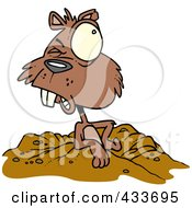 Royalty Free RF Clipart Illustration Of A Groundhog Emerging by toonaday